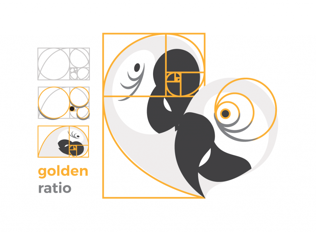 Case study: Open Heart Parrot Rescue, a fictitious organization. Logo design infographic explaining its golden proportions.