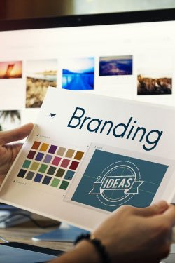 Photo. A branding specialist reviews Brand Guidelines.