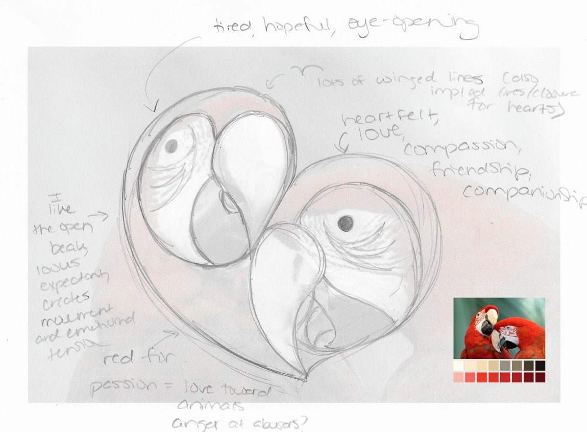 Case study: Open Heart Parrot Rescue, a fictitious organization. Initial sketches for the logo design.