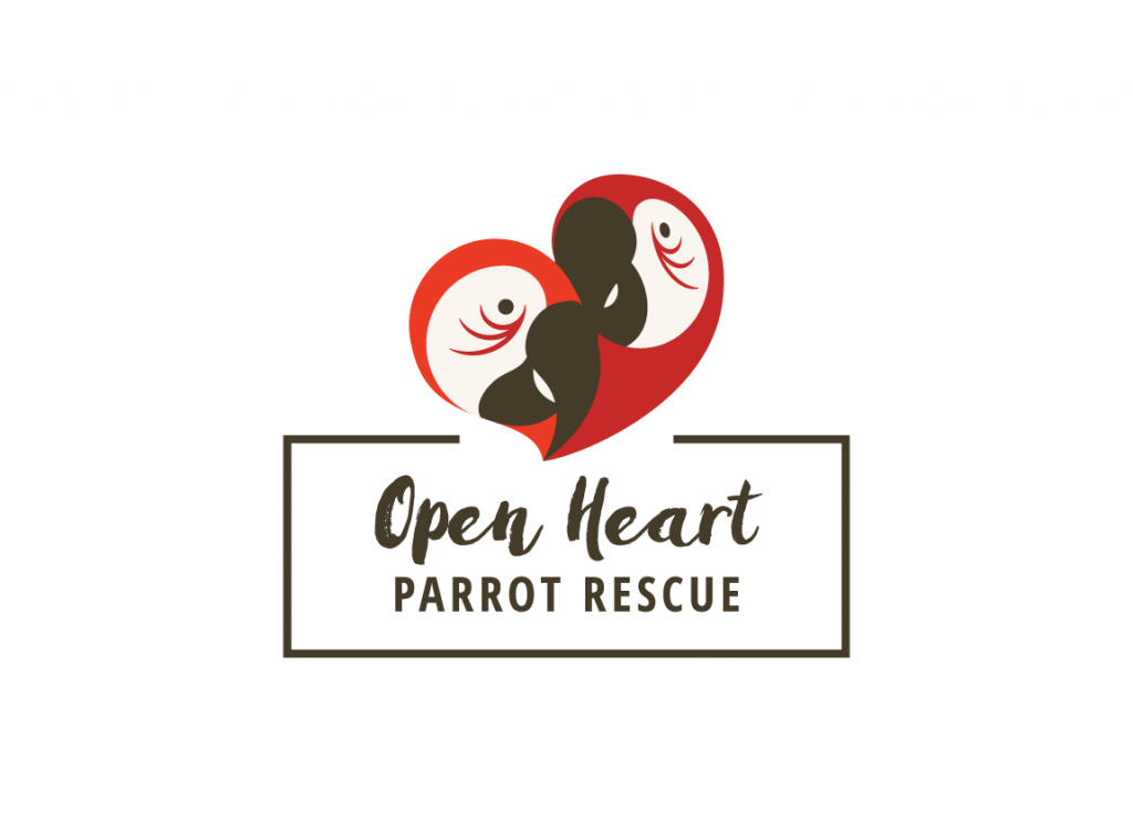 Case study: Open Heart Parrot Rescue, a fictitious organization. Flat color logo design.