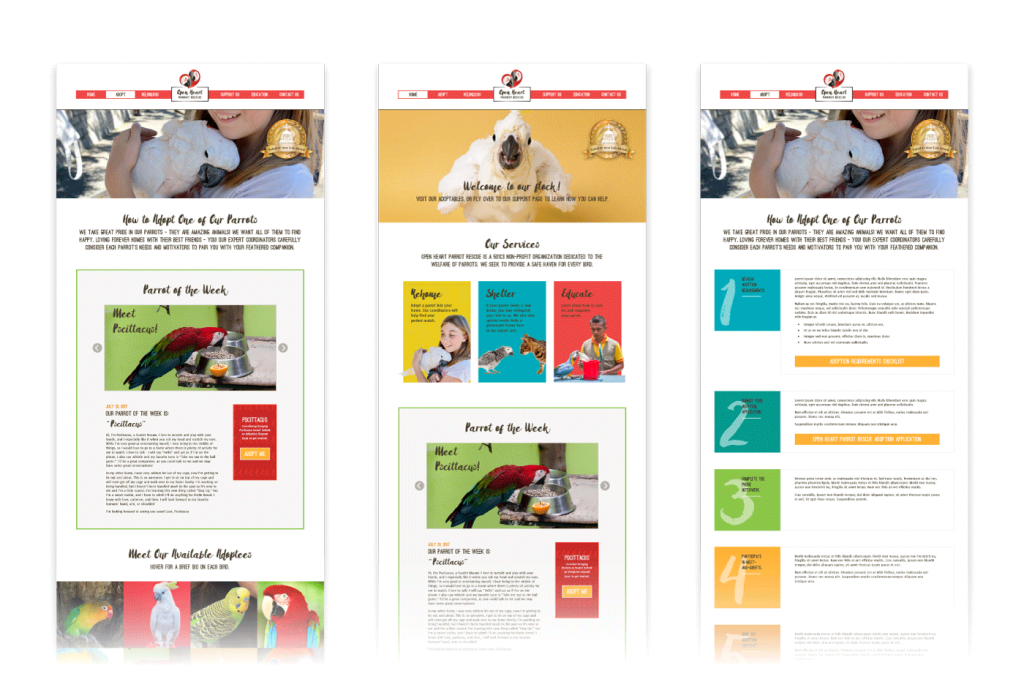 Graphic. Mockups of web page designs for the website of Open Heart Parrot Rescue.