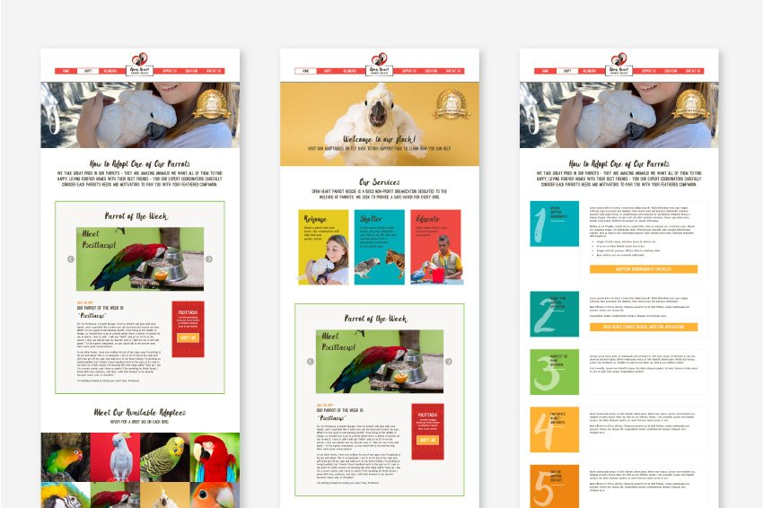 Graphic. Mock-ups of web page designs for the website of Open Heart Parrot Rescue; static mock-ups are another kind of web design deliverable.