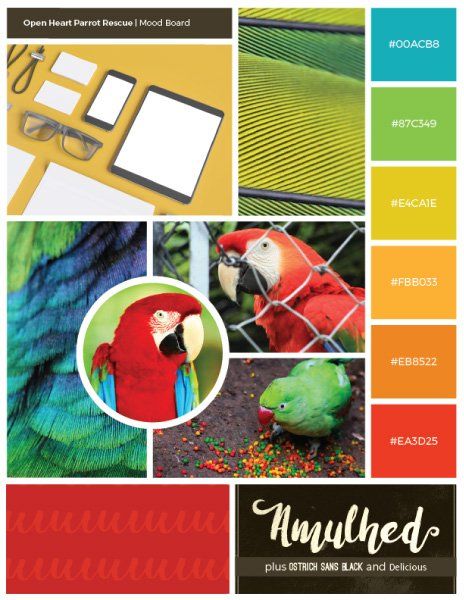 Graphic. One graphic design deliverable is a brand mood board for Open Heart Parrot Rescue.
