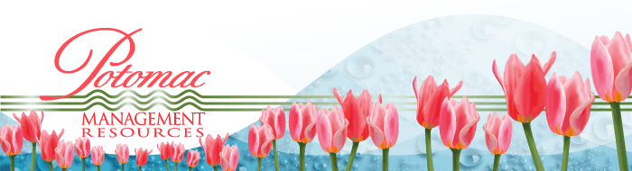 "Example of colored gradient meshes used to ""paint"" tulips in Illustrator for an PMR Tidings email header."