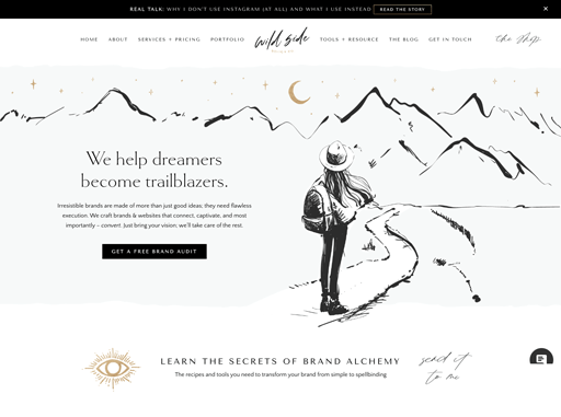 Screenshot. Wild Side Co. embeds inky, freeform, hand-drawn illustrations guiding users through their site.